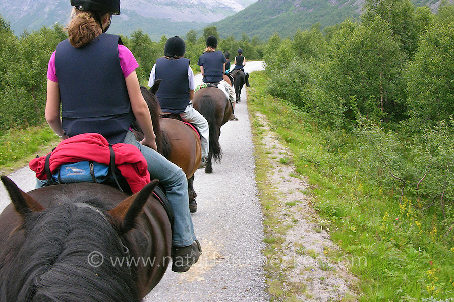 Wanderritt mit Pony in Nord-Norwegen, Skandinavien, Ritt durch die Naturlandschaft, Wander-Ausritt, Ausritt, Reiten