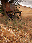 A rusty old tank sits on a decaying wood stand in the wheat fields of the Palouse in Eastern Washington State.