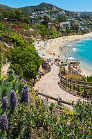 Laguna Beach; Ca; Montage Resort, Treasure Island Beach; seaside; resort;