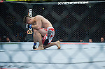Ricardo Lamas reacts to winning his featherweight match against Cub Swanson during Saturday's UFC on Fox event at the Honda Center.