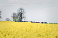 peloton on it's way to Huy<br /> <br /> 81st La Fl&egrave;che Wallonne (1.UWT)<br /> One Day Race: Binche &rsaquo; Huy (200.5km)