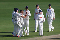 Ravi Bopara of Essex is congratulated by his team mates after taking the wicket of Gareth Berg during Essex CCC vs Hampshire CCC, Specsavers County Championship Division 1 Cricket at The Cloudfm County Ground on 20th May 2017