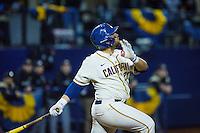 Cal Baseball
