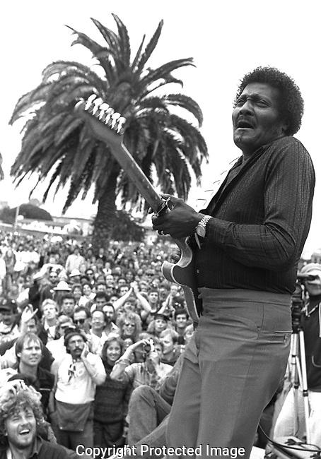 Albert Collins, Sept 1987, San Francisco Blues Festival, 92-19-13