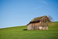 Small wooden barn in grass field, Allgaeu region, Bavaria, Germany
