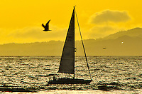 A boat sails in Santa Monica Bay amid the sunset on Thursday, Marc4, 2013.