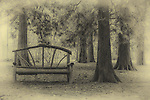 A park bench in the Arboretum in Sandpoint, Idaho