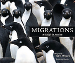 MIGRATIONS by Art Wolfe<br />