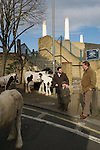 "London Cob Horse dealers ""back end day"" sale. Its the last day of trading in the year. Battersea London UK"
