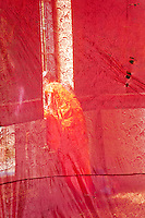 A semi transparent veil obscrues the figure of a buddhist monk in a tradiotnal saffron robe