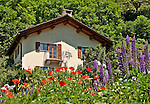 House with a colorful garden in Soglio, Switzerland a town the Bregaglia Valley which dates back to 1219 and is said to be one of the most picturesque towns in Switzerland; Graubunden Canton