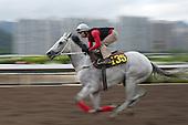 Winning Hong Kong jockey Matthew Chadwick rides California Memory at the Hong Kong Jockey Club.