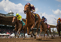 ARCADIA, CA - APRIL 08: Queen Laila #6, ridden by Rafael Bejarano win a 3 year old MSW race at Santa Anita Park on April 08, 2017 in Arcadia, California.  (Photo by Zoe Metz/Eclipse Sportswire/Getty Images)