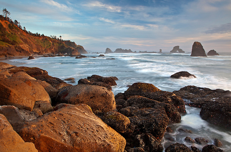View of coastline in Ecola State Park near Indian Beach, Oregon, USA