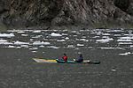 Kayakers in Holgate Arm