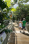 a couple walks to the entrance of El Yunque Rainforest, Vieques, Puerto Rico
