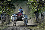 Bringing the harvest to market by ox cart in El Bonete, a small village in northwestern Nicaragua.