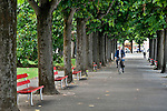 A man in a suit rides his bike through a tree covered pathway lined with the traditional Swiss red park benches, in Paradiso, a town right next to Lugano, Switzerland