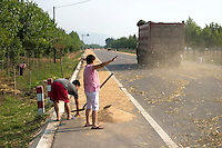 Farmers collect wheat seeds detached from the thatch by the passing vehicles on the road, near Yongji, Shanxi province, China, on June 12, 2010. Known as the country of rice, China is also the world's main producer of wheat, with an annual output of 112 million tons. In this little village of Shanxi province, Chinese farmers use a clever way to detach the wheat's seed from the thatch. They lay the wheat down the public road, and wait for vehicles to drive. The velocity's strength detaches the seeds from the thatch. The farmers need not to beat the wheat manually anymore. Photo by Lucas Schifres/Pictobank