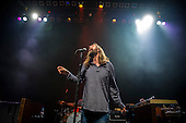 THE BLACK CROWES (2013)