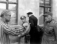 Russian slave laborer among prisoners liberated by 3rd Armored Division points out fromer Nazi guard who brutally beat prisoners.  Germany, April 14, 1945.  T4c. Harold M. Roberts. (Army)<br /> NARA FILE #:  111-SC-203466<br /> WAR &amp; CONFLICT BOOK #:  1111