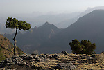 Simien Mountains National Park, Ethiopia, 3260m 10,700ft high.Africa....