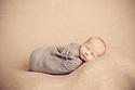 Barrett Newborn Session