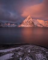 Olstind mountain peak glows pink at sunrise, Toppøy, Moskenesøy, Lofoten Islands, Norway