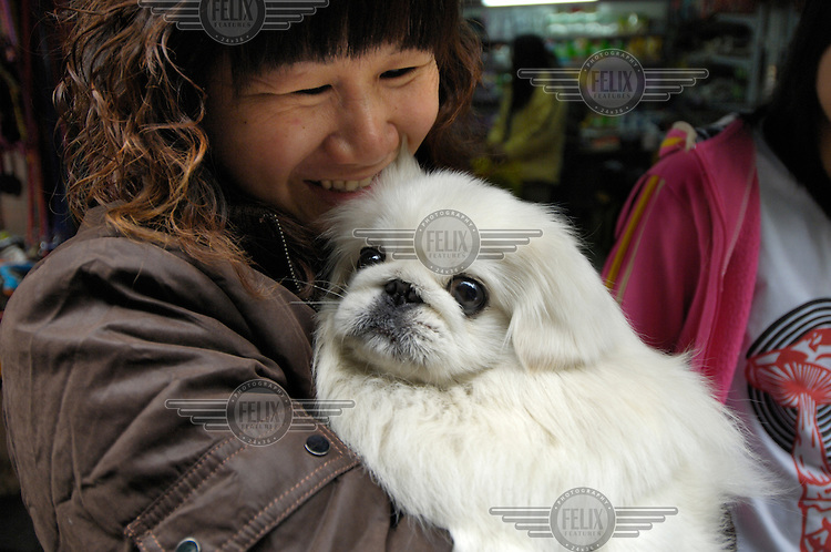 Woman with her pet dog, which she is carrying with her on a trip to buy dog food at a street corner close to where dogs used to be sold for food in Qingping Market. Pets are becoming more and more popular amongst China's middle class.