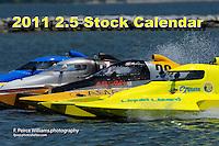 2011 2.5 Stock Calendar