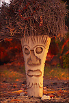 Coconut palm carved into tiki, Hawaii<br />