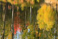&quot;Impressions of Autumn&quot;<br />