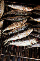 Sardines grilling on the barbeque
