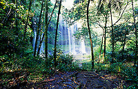 Spectacular waterfall in Palau during the rainy season, Palau, Micronesia