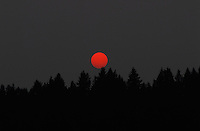 &quot;RED DOT SUNSET&quot;<br /> <br /> Spectacular Montana sunset with the sun, and orange ball, barely peeking through smokey skies. The Kootenai Forest in silhoutte