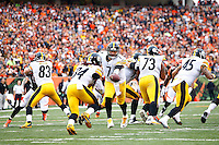 Ben Roethlisberger #7 hands the ball off to DeAngelo Williams #34 of the Pittsburgh Steelers against the Cincinnati Bengals during the game at Paul Brown Stadium on December 12, 2015 in Cincinnati, Ohio. (Photo by Jared Wickerham/DKPittsburghSports)