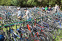 Cyclists at free bike parking area provided by The San Francisco Bicycle Coalition at the Hardly Strictly Bluegrass Festival in Golden Gate Park. San Francisco, California, USA