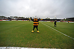 Barnet 1 Rochdale 0, 08/05/2010. Underhill Stadium, League 2. The final game of the season at Underhill. The Bees must beat Rochdale to guarantee their survival. Rochdale are celebrating promotion to League one. The Barnet mascot. Photo by Simon Gill.