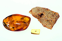 AMBER AND COPAL<br /> (Variations Available)<br /> Polished Amber and Rough Amber <br /> Clockwise from left: polished Dominican amber, polished Baltic amber with insect, and rough amber.