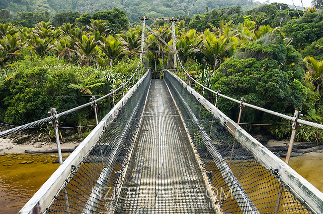 Swingbridge over Kohaihai river on Heaphy Track in Kahurangi National Park, West Coast, Buller Region, New Zealand