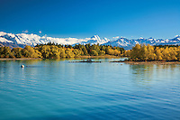 Image of vivid Autumn colours on the shores of Lake Pukaki. Mackenzie Country, South Canterbury South Island New Zealand.