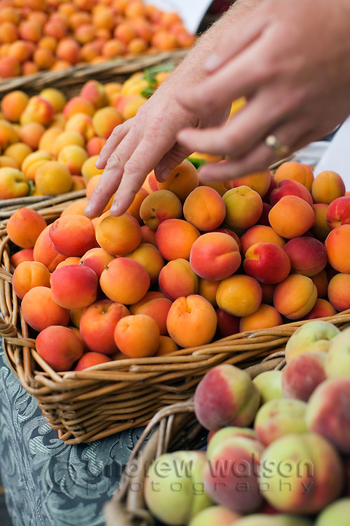 Fresh fruit at the weekly Salamanca Market, in Salamanca Place.  Hobart, Tasmania, AUSTRALIA