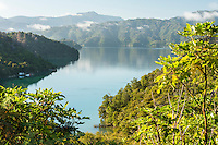 Mistletoe Bay in Marlborough Sounds, Marlborough Region, South Island, New Zealand