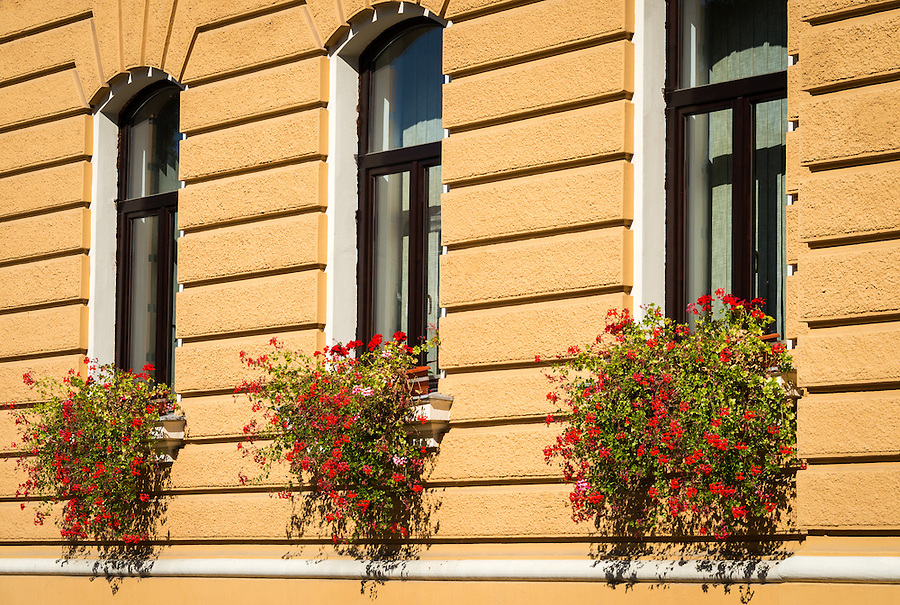 View of typical construction and windows decorated with flowers in the old town of Bra?ov in Romania.