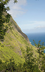 Hawaii: Molokai, scenic vertical view of cliffs, seafins during Mule Ride..Photo himolo115-71844.Photo copyright Lee Foster, www.fostertravel.com, lee@fostertravel.com, 510-549-2202
