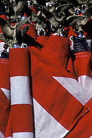 Close up detail flags and cast bronze eagle tops