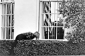 Susan Ford, daughter of United States President Gerald R. Ford, tries to sneak through a hedge outside the Oval Office at the White House on October 5, 1974.  She was attempting to tease her father, President Ford, as he worked at his desk.  She failed and was caught by her father.<br /> Mandatory Credit: David Hume Kennerly / White House via CNP