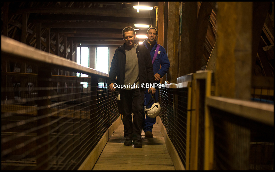 BNPS.co.uk (01202 558833)<br /> Pic: TomWren/BNPS<br /> <br /> Gary and Richard make their way across the interior of the nave roof.<br /> <br /> How many men does it take to change a lightbulb... at the top of Britain's tallest spire.<br /> <br /> When your office is Salisbury Cathedral the simple task of changing a light bulb involves four men, a 404ft climb and takes three hours.<br /> <br /> Ecclesiastical carpenter Richard Pike needed a head for heights when he joined Gary Price, who is in charge of conservation, to make the daring ascent with two rope specialists to ensure their safety. <br /> <br /> Despite working at the cathedral for 27 years, it was the first time Richard has ever made the hair-raising climb.