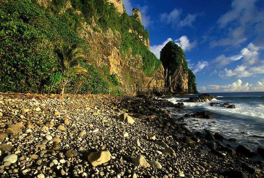 American Samoa National Park, on the island of Tutila. The craggy rocks are home to numerous seabirds, including frigatebirds, boobies, white (fairy) terns, tropicbirds, and noddy terns.