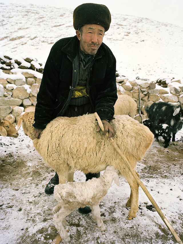 """Er Ali Boi, the richest  """"sane"""" man in Pamir. He owns 1000 goats, 300 yaks, 4 horses, 6 camels. Holding a sheep while the lamb is breast feeding..Campment of Esh Keli..Winter expedition through the Wakhan Corridor and into the Afghan Pamir mountains, to document the life of the Afghan Kyrgyz tribe. January/February 2008. Afghanistan"""